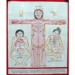 Tibetischer Medizin Yoga Thangka Nr. 6 ca. 40 x 49cm