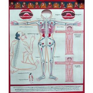 Tibetischer Medizin Yoga Thangka Nr. 4 ca. 40cm x 48cm